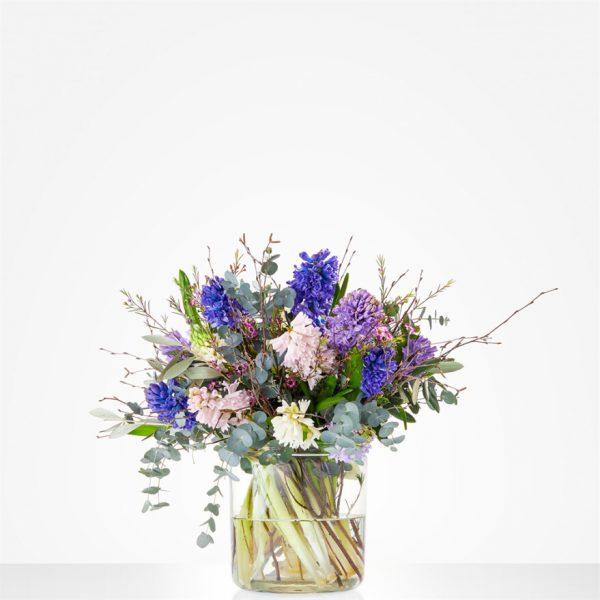 mooie hyacinten
